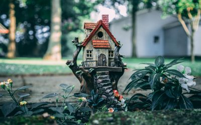Een duurzame Tiny house misschien iets voor jou?